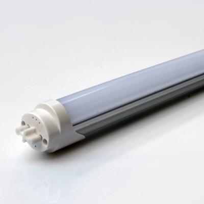 Świetlówka T8 60 cm biała zimna