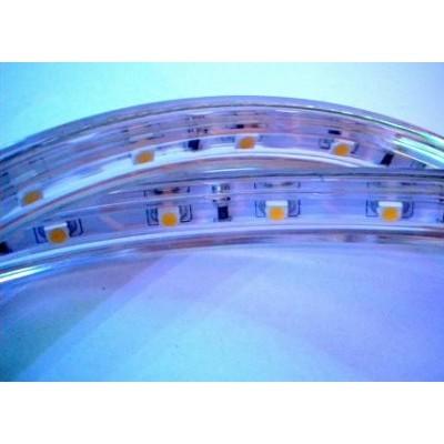 Taśma LED 5050-60-IP65-b.zimna K-426